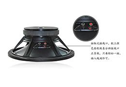 专业音响扬声器得到广西用户的认同【爵士龙】