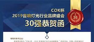 """喜讯!JSL入选COK杯·2019声光视讯产业品牌评选""""专业扩声(民族)品牌30强"""""""