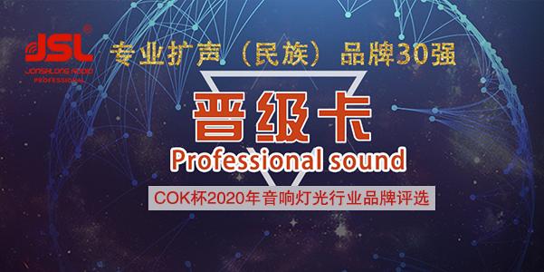 喜讯!JSL爵士龙音响晋级专业扩声系统(民族)品牌30强